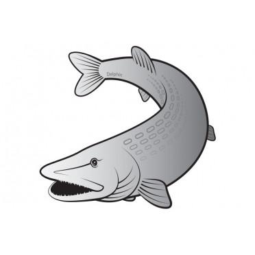 8 + 2 balenia zdarma Rybárska nálepka   šťuka SILVER